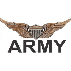 Army Wings / Badges