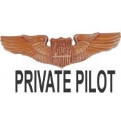 Private Pilot Wings (1)