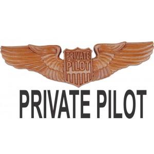 Private Pilot Wings
