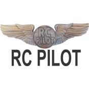 RC Wings (2)