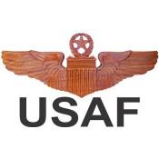 Air Force (17)