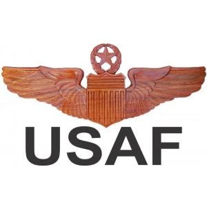 Air Force Wings / Badges
