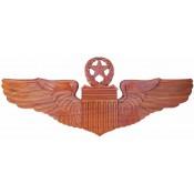 Air Force Wings / Badges (15)