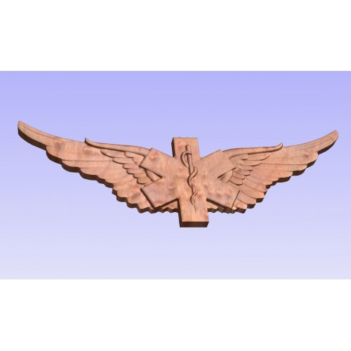 Air Force EMS Wings