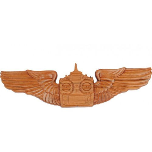 RC Transmitter Wings