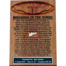 Breaking of the Wings Frame