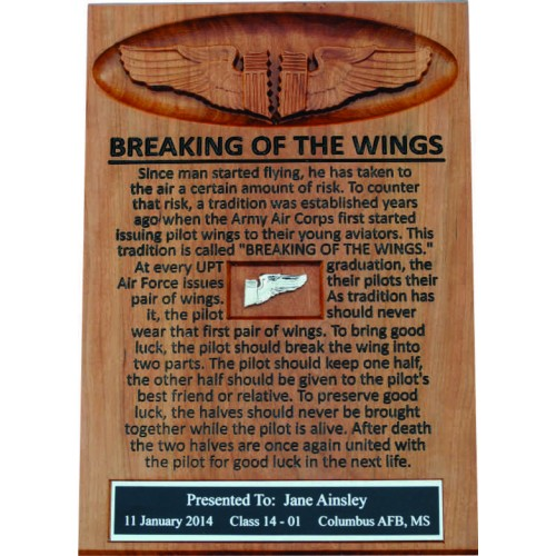 Breaking of the Wings Frame